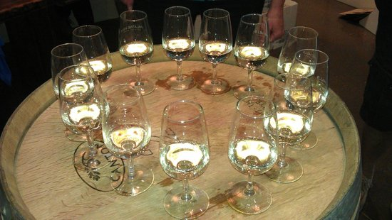 Palatine Hills Estate Winery: For our tour!