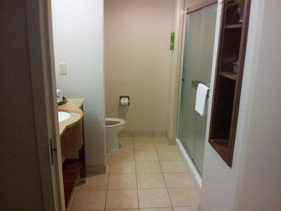Hampton Inn & Suites Pittsburg : Bathroom