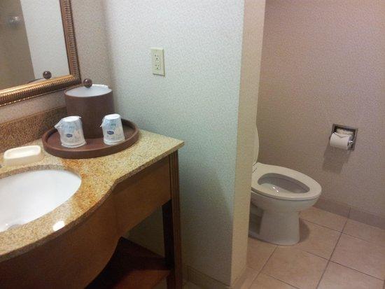 Hampton Inn & Suites Pittsburg: Toilet and sink