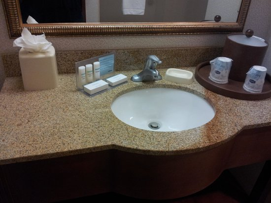 Hampton Inn & Suites Pittsburg: Sink