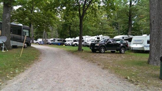 North Beach Campground: Sites