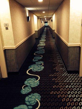 Hampton Inn and Suites Seattle North Lynnwood: Hallway on 4th floor