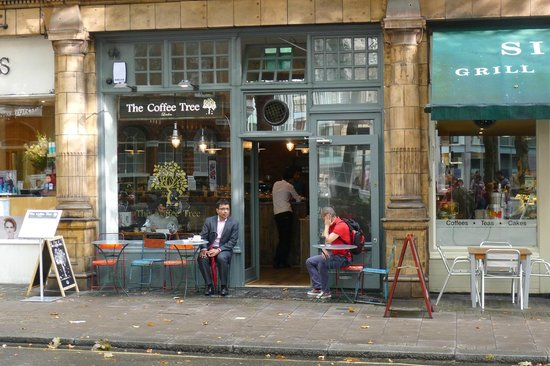 The Coffee Tree: Nice view from the outside