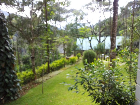 Niraamaya Retreats Cardamom Club - Thekkady: garden view