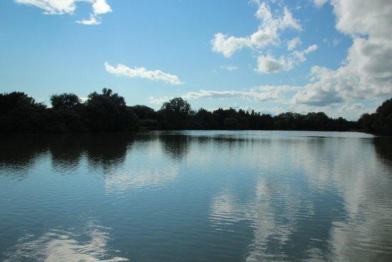 Le Parc des Oiseaux : Vue de l'étang du Parc... paisible !