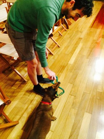 Oasi Hotel: Playing with Atena, the hotel dog