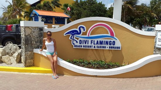 Divi Flamingo Beach Resort and Casino : The new front entrance sign which looks even better after dark :-)