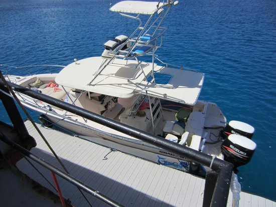 Big Blue Excursions: Great boat!