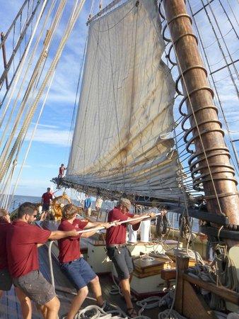Pride of Baltimore II : Lowering the Main Sail