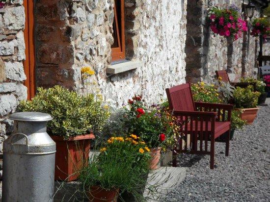 Llandyfaelog, UK: Guest Terrace