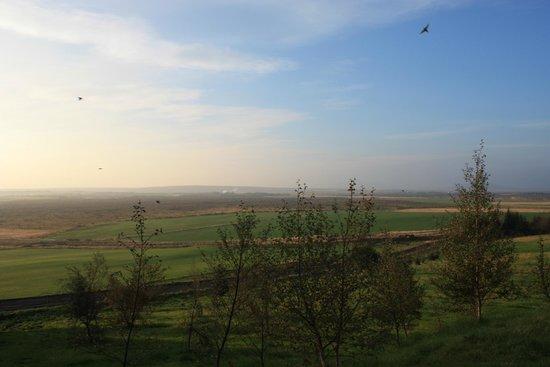 Farmhotel Efstidalur : Morning view