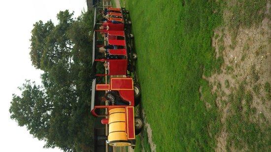 Oasis Camel Park: the land train