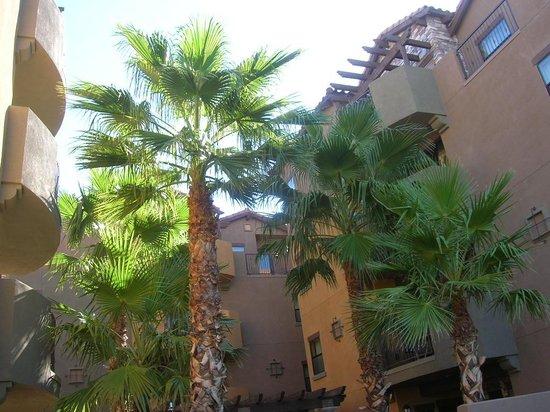 Cibola Vista: Between buildings