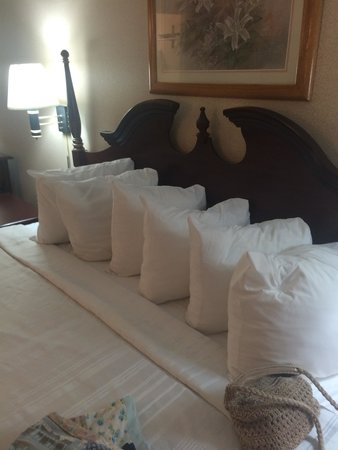 Econo Lodge Coliseum: many pillow!