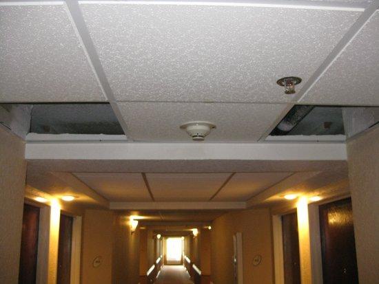 La Quinta Inn & Suites Hot Springs : Hallway to room
