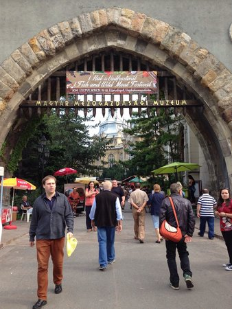 Varosliget: Entrance to museum and festival
