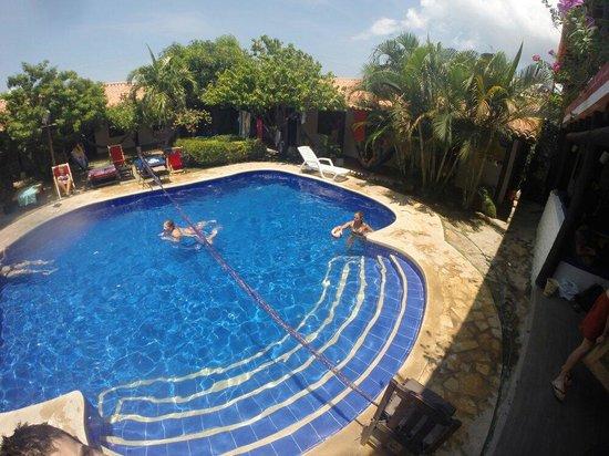 The Dreamer Hostel: Pool
