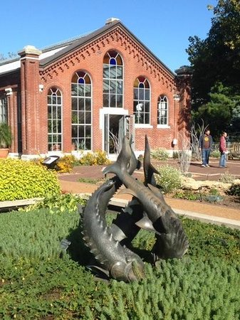 Missouri Botanical Garden: fish sculpture