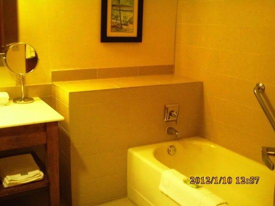 The Westin Dawn Beach Resort & Spa, St. Maarten: Bathroom
