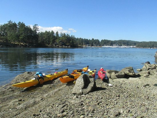 A Paddle in the Park Kayaking: Rest spot and checking out one of the many islands off Sidney.