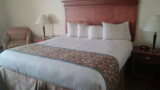Baymont Inn & Suites Alexandria: Our room!