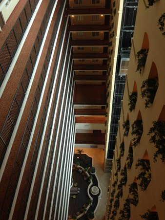 Embassy Suites by Hilton Tampa - Downtown Convention Center: Hallways