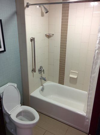 Hyatt Place Auburn Hills: bathroom