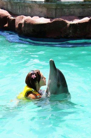 Melka Excelsior Dolphin & Wildlife Resort : Mmuuuaaahh