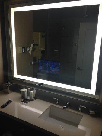 omni dallas hotel tv in the bathroom mirror