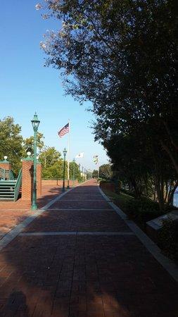 Riverwalk: view of path