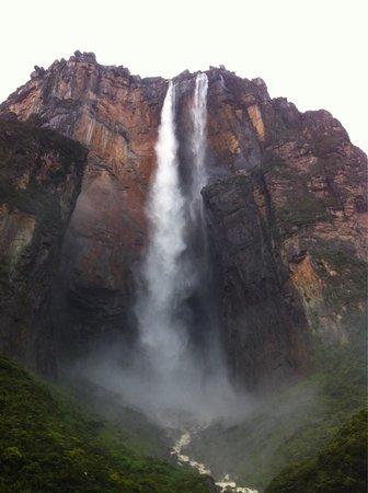 Ciudad Bolivar, Venezuela: Angel Falls