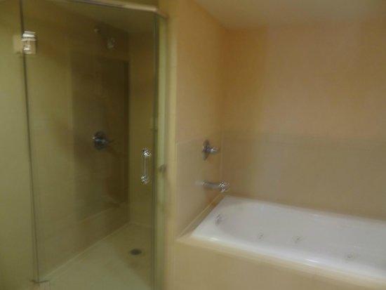 Hilton Garden Inn Atlanta Downtown: Full bathtub & separate shower in the master bath.