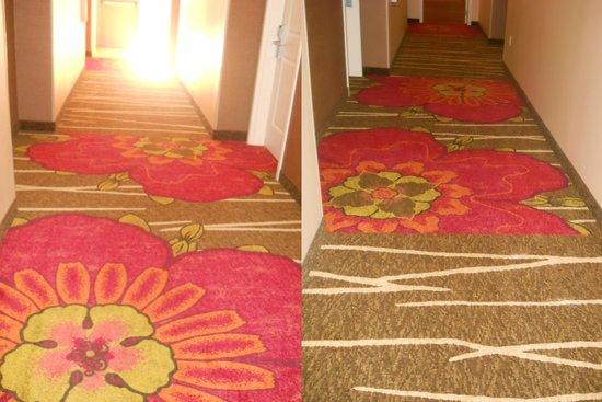 Hilton Garden Inn Ontario / Rancho Cucamonga: 8月に宿泊した時ホテルの改装があったようです、新しくなったハイビスカスの絨毯