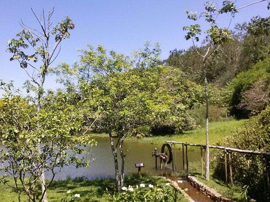 Areia que Canta: Antes de fazer a trilha tem esse lago para relaxar ao som dos pássaros!