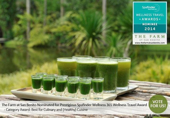 The Farm at San Benito: Green Juice