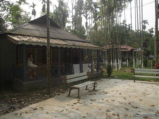 Aranya Jungle Resort: The % - Bed Room Cottage