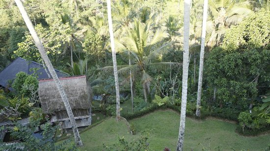 The Kampung Resort Ubud: top hill suite