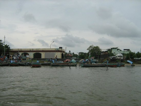 Pichavaram, Ấn Độ: A view from the Pitchavaram backwaters