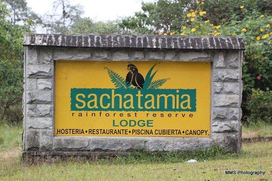 Sachatamia Lodge: Sachatamia