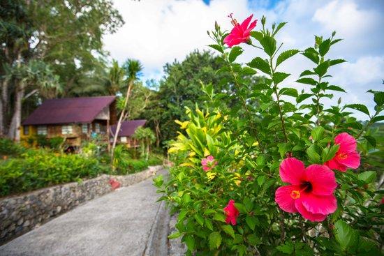 Aliiibamou Resorts Carolines: 032014