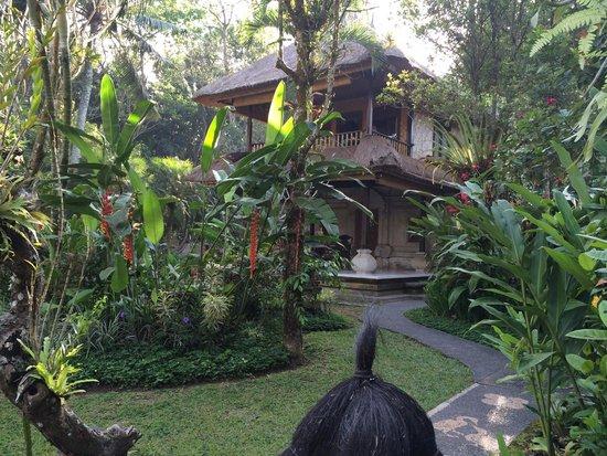 Beautiful gardens at Alam Indah