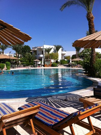 Dive Inn Resort: бассейн-главный плюс отеля