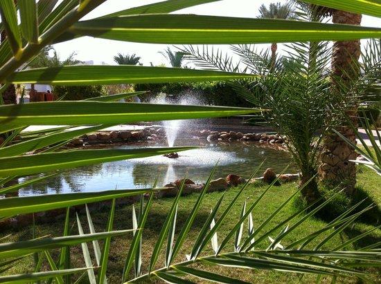 Dive Inn Resort: уютный уголок