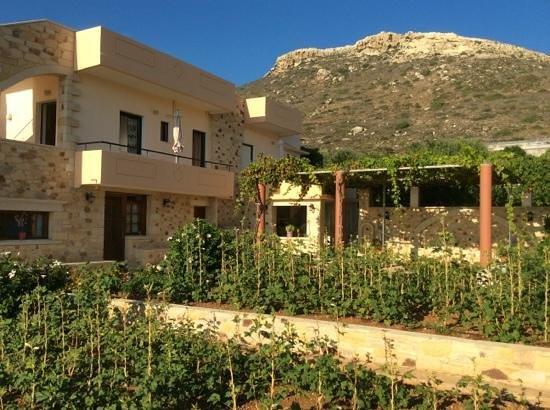 Romantica Apartments: Garden view