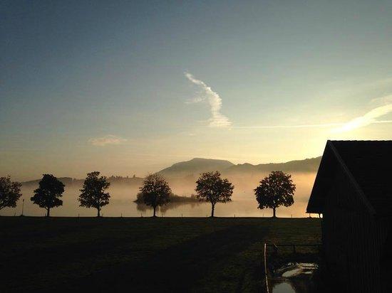 Gasthof Seeklause: Aussicht morgens