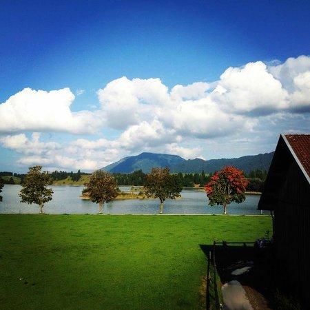Gasthof Seeklause: Aussicht tagsüber