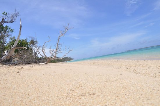Serenity Beaches Resort: Paradise, right?