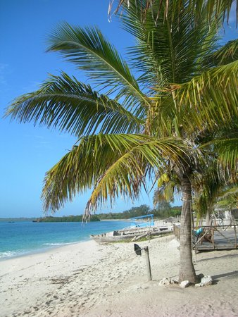 Kimbilio Lodge: la spiaggia