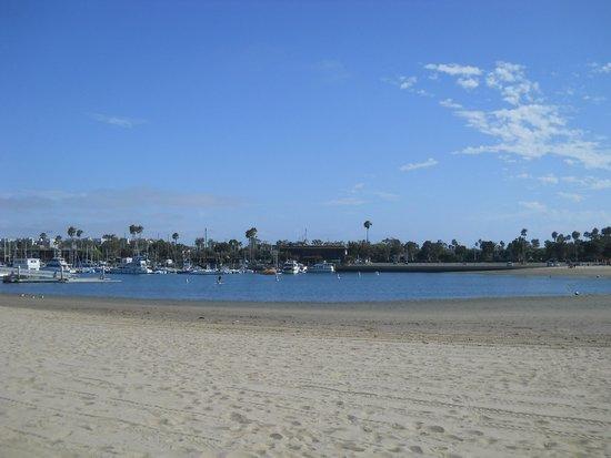 Hilton Garden Inn Los Angeles Marina Del Rey : 日光浴・海水浴もできる遠浅の砂浜のペイシンD