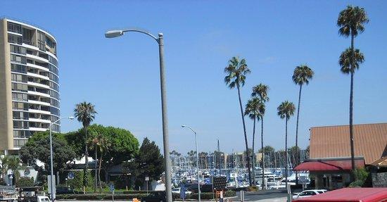 Hilton Garden Inn Los Angeles Marina Del Rey : ホテルハーバービューの窓からのハーバー
